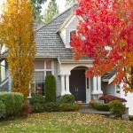 Home Improvement: Get Ready for Fall