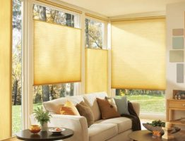 blinds for windows